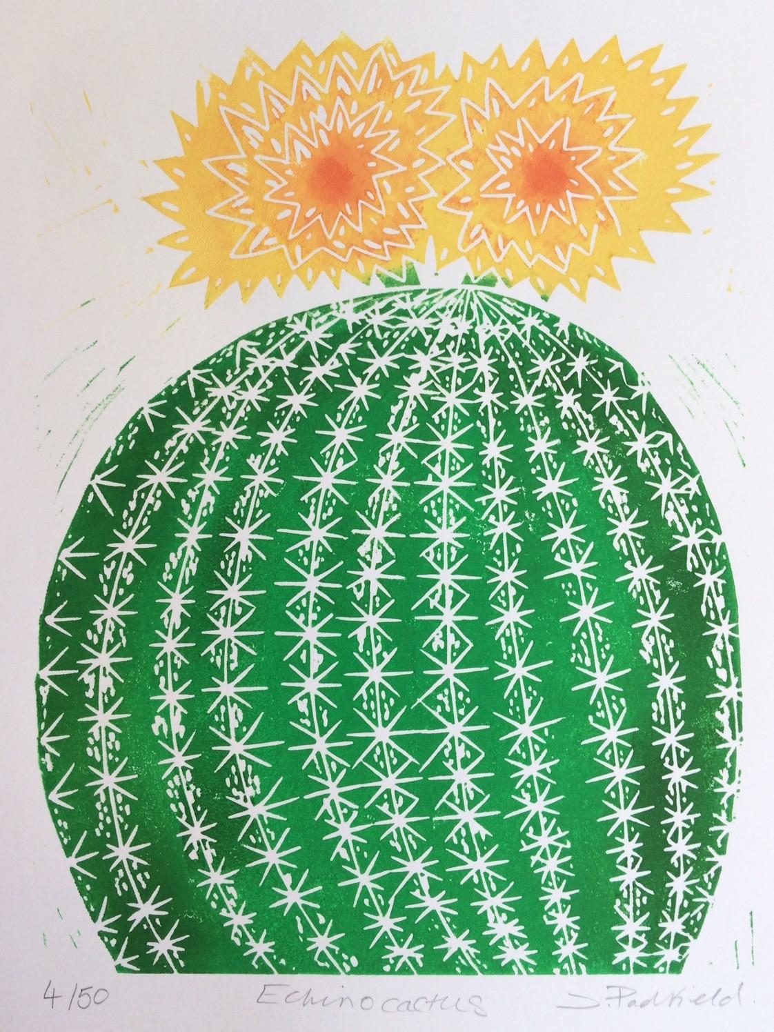 Joanna Padfield, Echino Cactus, 2019, £45, linocut, limited edition of 50, Wychwood Art