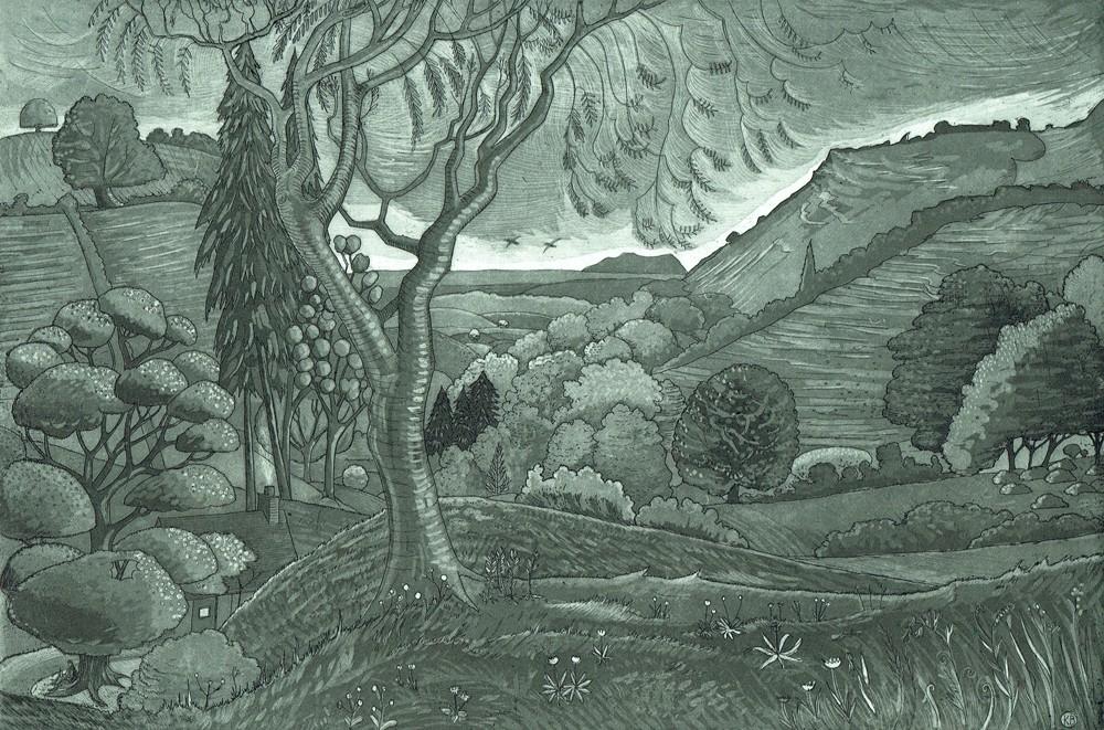 Reading Dark Mountain by Kit Boyd