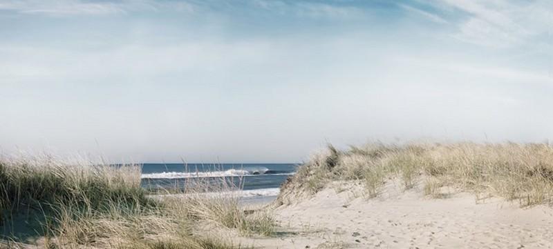 Mark-Mackinnon-Landscape-Montauk-offshore-breeze-The-Art-Movement